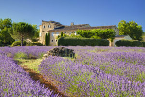 Luxury villa in Provence with pool